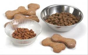 Выбор сухих кормов для собак